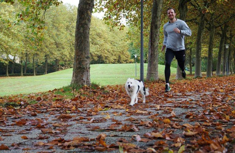 Laufen mit Hund in der City Nord